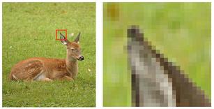 Hvad er en pixel