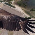 Drone billeder vinderbillede