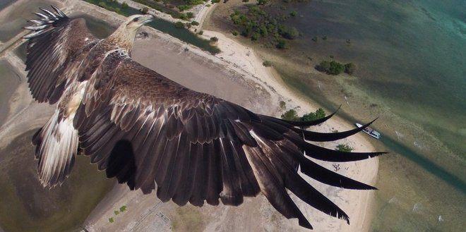 Se disse 6 betagende drone billeder