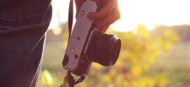 Tag de flotteste billeder af dine prydbuske